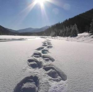 snowshoe zermatt 2